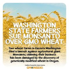 Washington State Farmers Sue Monsanto Over GMO Wheat. https://www.change.org/petitions/stand-with-wheat-farmers-against-monsanto