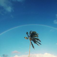 Lots of rain lately...but we don't mind the rainbows. #luckywelivehawaii #alohastate