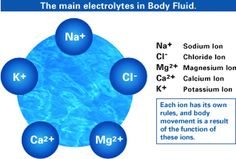 Things to remember about Electrolytes
