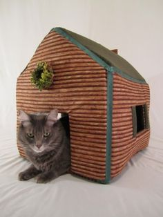 cat cabin -