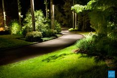 JF - would like to up the lighting on the drive way. Get bigger light to run down length of drive and spot light some of the trees on each side.