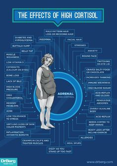 Dr. Berg's Infographic - The Effects of High Cortisol http://drberg.com