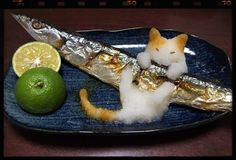 さんまに猫おろし。☆Sanma (Pacific saury or mackerel pike) with daikon oroshi (grated radish), a condiment indispensable when eating sanma. Pour some soy sauce when eating, esp. if your daikon oroshi happens to be a cat & needs some colors. Japanese Food Art, Japanese Sushi, Bento Recipes, Gourmet Recipes, Little Lunch, Food Humor, Edible Art, Cute Food, Sweets