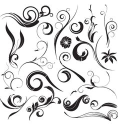Floral graphic elements vector 6294 - by L2studio on VectorStock®