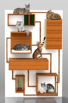 custom made cat book shelf