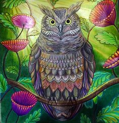 Great horn owl (1/2) #angryowl #eyebrows #blue #purple #rainbow #yellow #adultcoloringbook #colouring #coloring #milliemarotta #tropicalwonderland #contrast #vibrant  #mixedmedia #pencils #felttip #potd #picoftheday #blending #shadeandlight #prismacolor