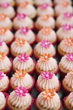 Raspberry cupcakes with vanilla frosting.