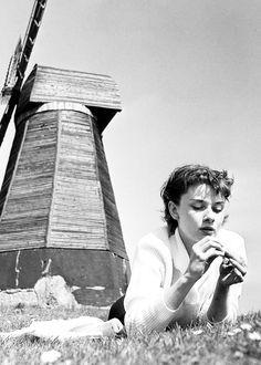 """laurasaxby: """" Audrey Hepburn in England, 1951. """""""
