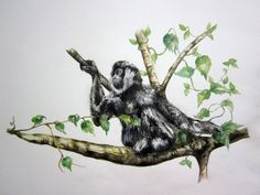 gibbone nero del Laos