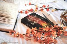 I have about 50 pages left in Godsgrave and my next read will be #thecityofbrass by S.A. Chakaraborty. I am soooo excited to read this book! Is it on your radar? Ive been thinking a lot about my #bookstagram feed- Ive in the past not taken certain types of pictures thinking they wont fit into my look or feed. I figured Id break out of my box and try my hand at other picture styles. I have no clue if you guys will like my experimenting but I really want to expand my photography style and…