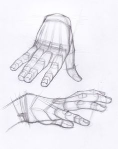 AnatoRef | Hand Studies