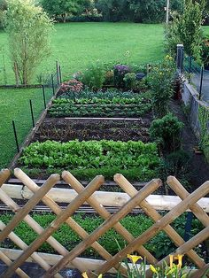 Somebody else's vegetable garden | Flickr - Photo Sharing!