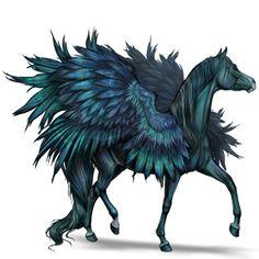 RestlessRiddle, Pegasus Arabian Horse Black #801866 - Howrse