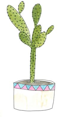 Puk Ewdokia - Cactus
