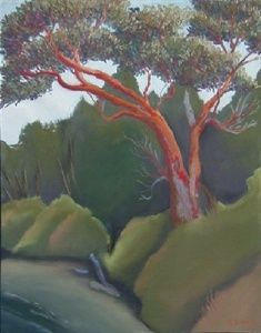 madrona tree painting