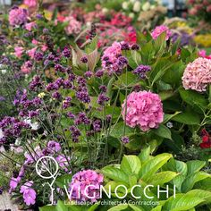A mix of various shades if pinks and purples can produce a striking arrangement. Even more so when you consider what texture can bring to the table. So simple. Purple, Pink, Texture, Plants, Inspiration, Surface Finish, Biblical Inspiration, Plant, Pink Hair
