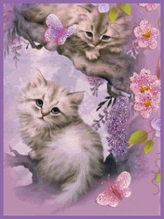 Your friendship is very special to me and I treasure you dearly! Love, hugs and blessings for you. Cute Baby Cats, Cute Cat Gif, Cute Funny Animals, Kittens Cutest, Cats And Kittens, Gifs, Kitten Wallpaper, Gato Gif, Teddy Bear Pictures