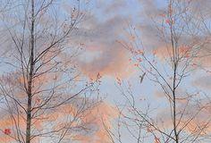 空の向こう 2012年-39-野地美樹子