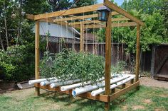Hydroponic gardening or hydroponics is the science of growing plants using only nutrient-rich liquid as a soil replacement. Learn about hydroponics here. Hydroponic Farming, Hydroponic Growing, Hydroponics System, Growing Plants, Hydroponic Tomatoes, Indoor Vegetable Gardening, Container Gardening, Organic Gardening, Veg Garden