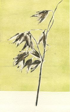 Grasses in the Wind by Maggie Smith from Printing between the Lines at Harbour House, July 2017