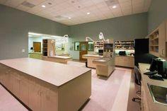 Cleveland Park Animal Hospital, Greenville, S.C. - 2012 #Veterinary Economics Hospital Design Competition - Treatment - dvm360