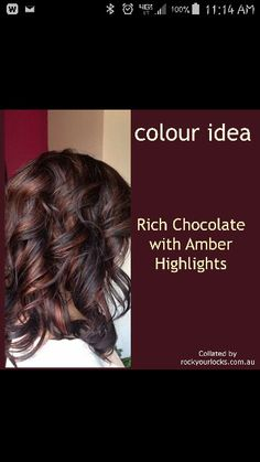 Rich chocolate with amber highlights