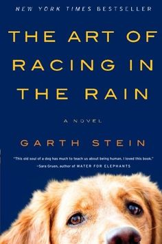 The Art of Racing in the Rain: A Novel by Garth Stein,http://www.amazon.com/dp/0061537969/ref=cm_sw_r_pi_dp_7vC3rb1XQ30EVFPE