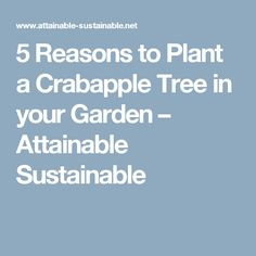 5 Reasons to Plant a Crabapple Tree in your Garden – Attainable Sustainable