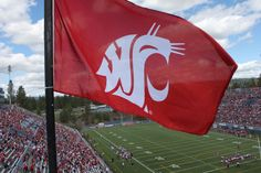 The Cougar Flag flies at the Crimson and Gray Game. Go Cougs!