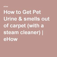 How To Get Pet Urine Smells Out Of Carpet With A Steam