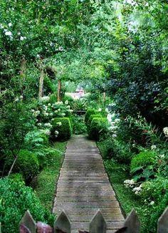 allée de jardin en lames de bois massif, arbustes et buis taillés et plantes vertes