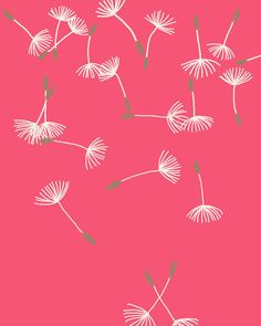 Fine Art Print.  Dandelion Puffs Scattered.  September 7, 2011.. $80.00, via Etsy.