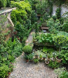 Belægning, belægningstegl, tegl, kliker, terrasse, ziegel, bricks, fliser. Hyggelig grøn have Perfect planting in a small space - We buy distressed properties and have a…