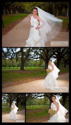 Avenue of Oaks at Boone Hall * Wedding Photography * Funderburk Bridal Portrait ©Rick Dean Photography 2013 Boone Hall Plantation