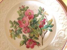 Antique Copeland Spode Set of 7 Botanical Plates by JoAnntiques Rose Cottage, Different Flowers, Country Life, Peach, Antiques, Coral, Passion, Summer, Vintage