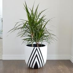 Common House Studio offers a wide selection of modern planters for your home. Designed in the heart of Niagara, our lightweight planter pots are made from the highest quality materials and are hand painted to order. Each and every planter is unique. Painted Plant Pots, Painted Flower Pots, Pottery Painting Designs, Cement Pots, Outdoor Pots, Home Decor Paintings, Plant Decor, Diy Painting, Planters