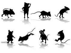 Mouse silhouette (need swiss cheese for pocket, mouse on cheese).