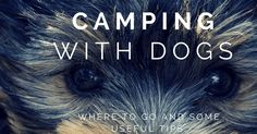 Where to go camping with dogs  http://www.gocampingaustraliablog.com/2013/05/where-to-go-camping-with-dogs.html?utm_content=bufferba673&utm_medium=social&utm_source=pinterest.com&utm_campaign=buffer