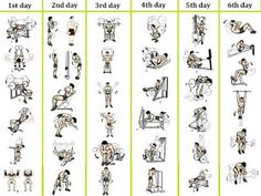 B: plan For Beginner's Weight Training Workout Routine Best Picture For Daily Workout printable For Your Taste You are looking for something, and it is going to tell you exactly what you are loo 6 Day Workout Routine, Daily Gym Workout, Gym Workout Chart, Gym Workouts For Men, Workout Plan For Men, Weekly Workout Plans, Weight Training Workouts, Fun Workouts, Workout Ideas