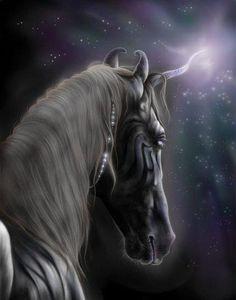 Unusual and beautiful Unicorn!