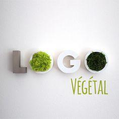 Logo végétal en mousse naturelle