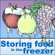 Cook and freeze now to avoid holiday stress. MU Extension's guide gives you tips on properly freezing foods. Freezer Cooking, Freezer Meals, Cooking Tips, Freezing Vegetables, Frozen Vegetables, Weird Fruit, Low Acid Recipes, Freezing Fruit, Fruit And Veg