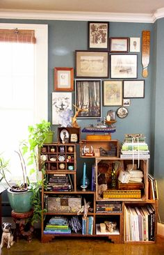 Eclectic Arrangement for this Denim Drift Painted Wall. Color for each Style.