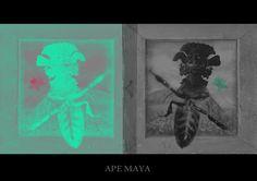 rappresentazione in chiave comicodark dell'ape-maya