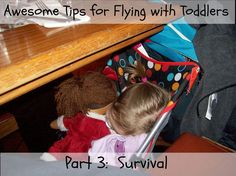 (This post contains affiliate links for your convenience.)   I am wrapping up this series on flying with toddlers by covering just basic ti...