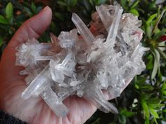 Mexico Mineral - Google+