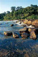 Los cauces de los ríos de aguas negras erosionan la dura arenisca del Escudo Guayanés formando bloques sueltos y angulosos, que lentamente s...