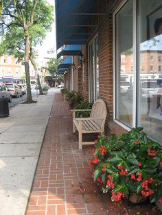 Dragon Winged Begonia Planters on Elm Street