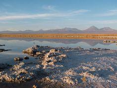 Laguna Cejar ubicada al interior del Salar de Atacama a una distancia aproximada de San Pedro de 28 km., de gran belleza escénica con aguas de color calipso y rodeada de sales de variadas formas. Debido a la alta concentración de estas sales usted podrá disfrutar flotando en sus aguas. Continuando nuestro recorrido hacia dos …
