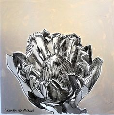 Title: Fynbos: Table Mountain Fynbos 7 Medium: Pen-and-Ink drawing on paper with oil paint background Size: 200 x Table Mountain, Hardy Plants, Paint Background, Amazing Flowers, My Arts, Van, Medium, Drawings, Paper